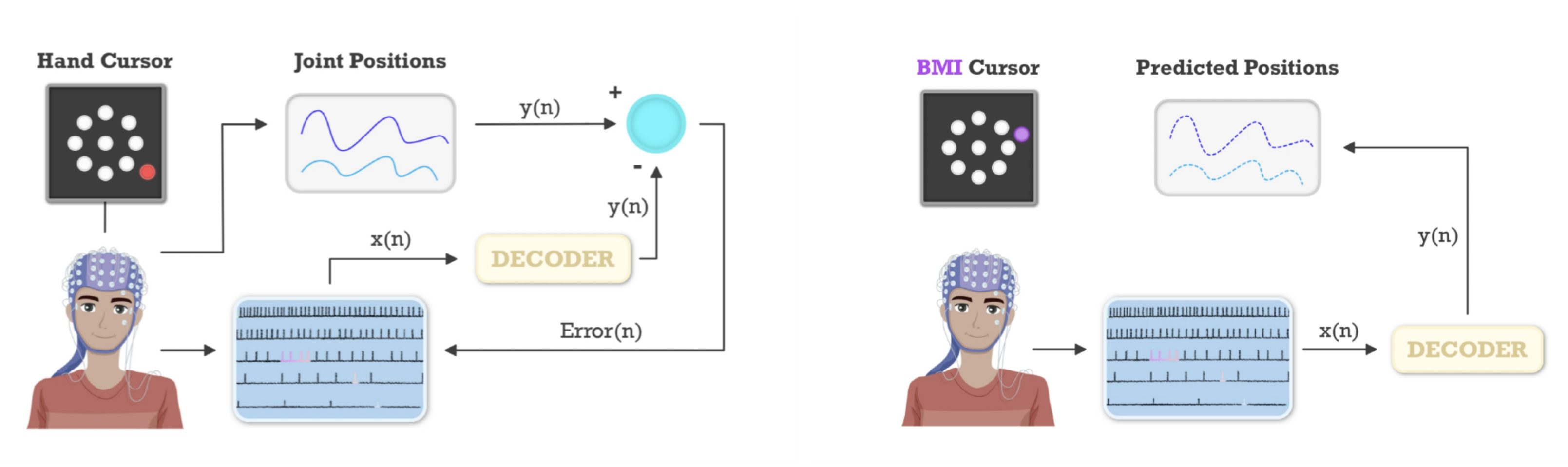 biomimetic_decoding.png